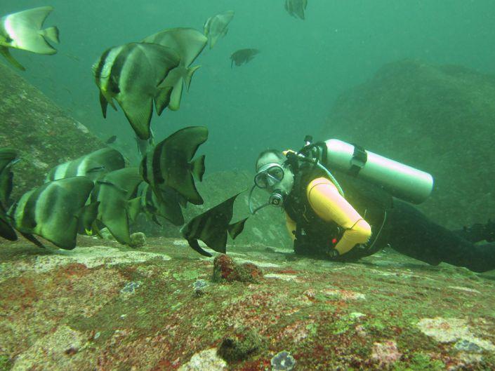 Bei der Lieblingsbeschäftigung - die Faszination Unterwasserwelt