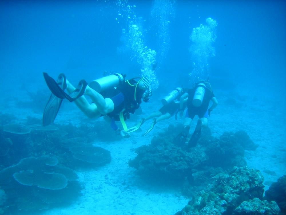 Erste Tauchgänge im Meer